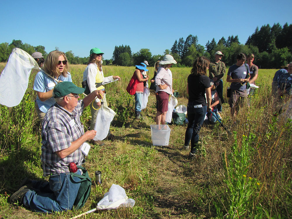 Beneficial Insects Workshop