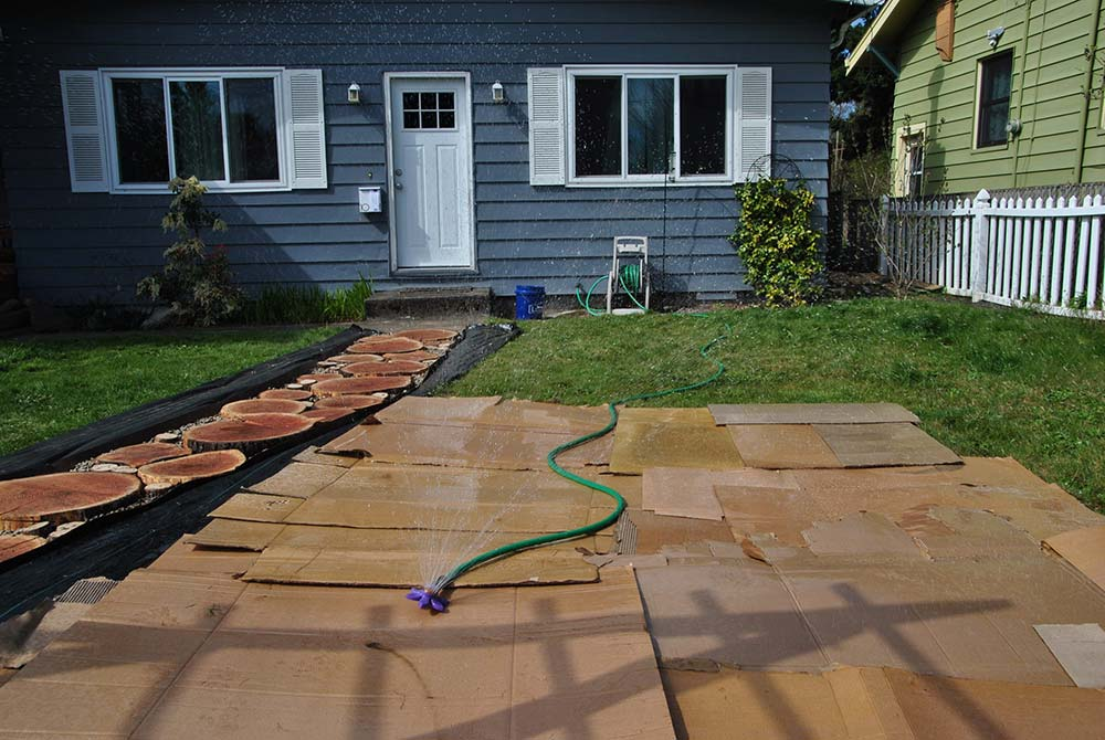Photo of cardboard laid on lawn with a running sprinkler.