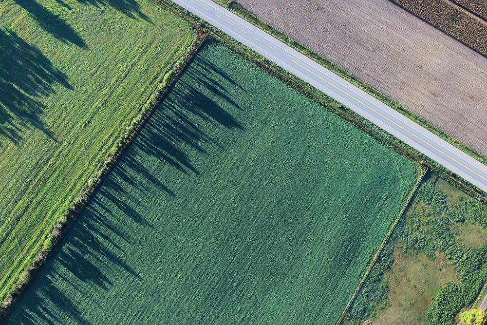 Farm Land Aerial View