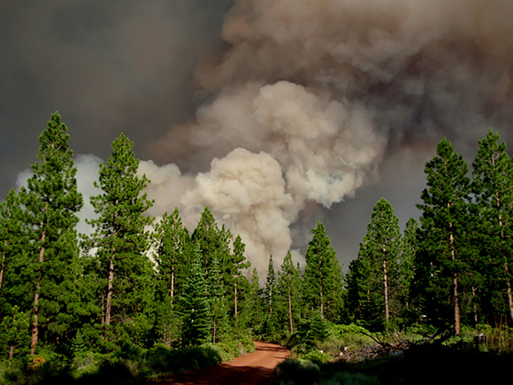 Rooster Rock Fire