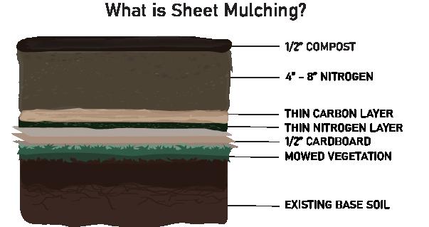 Diagram of a sheet mulching project.