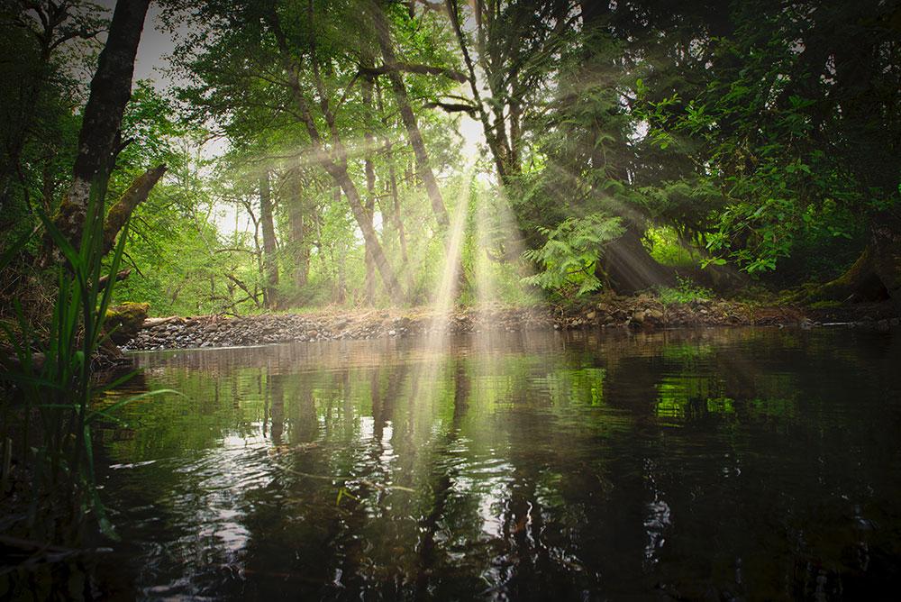 Stream With Sun Burst