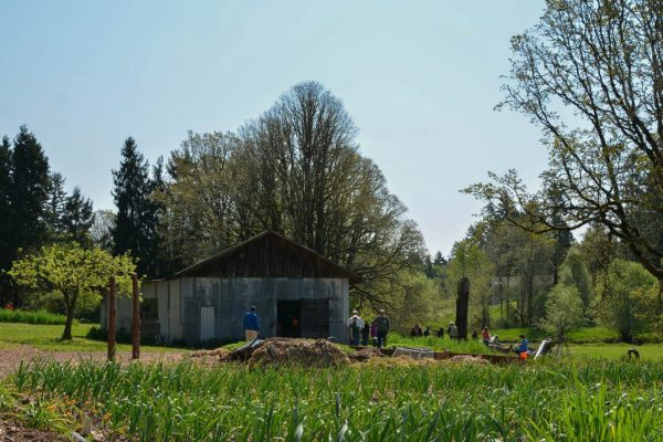 Pictured above is Swallowtail Farm, one of the many small-scale food producers located in Washington County.