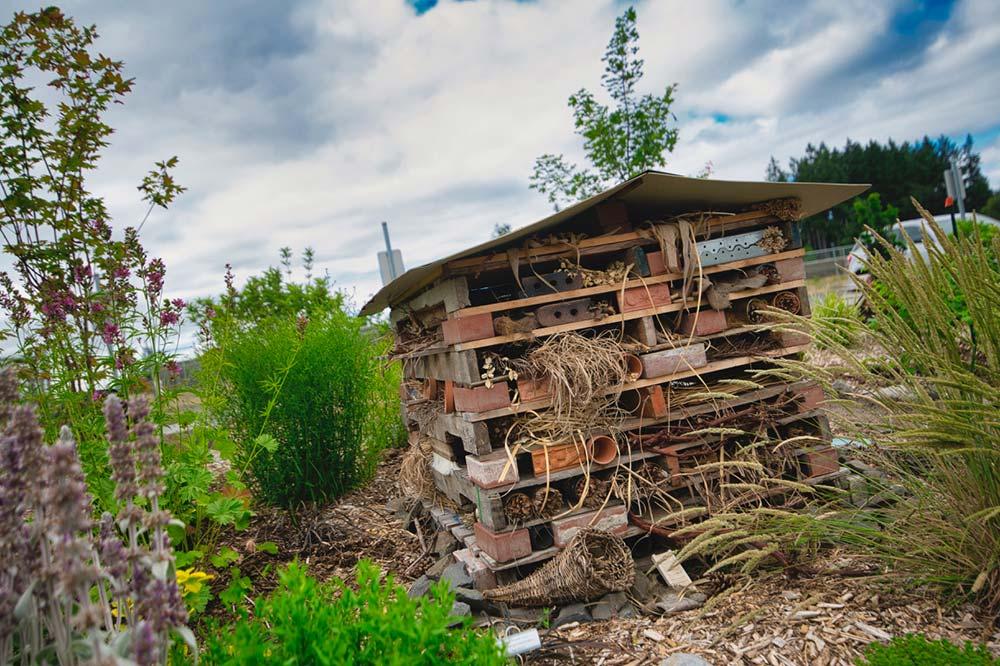 habitat structure.