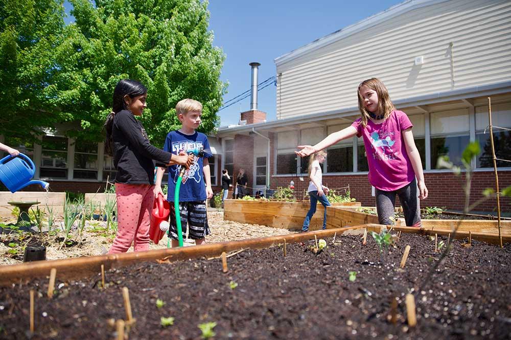 Children work in the raised garden beds at West Union School
