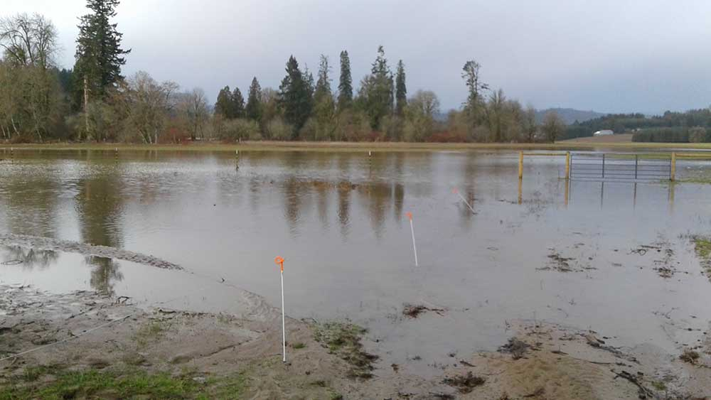 A portion of Wingham Farms along West Fork Dairy Creek experiences severe flooding in the winter.