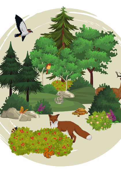 Biodiversity01_TSWCD