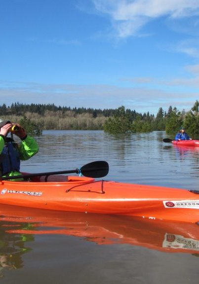 The slow-moving waters of the Tualatin River provide a great opportunity for paddlers to enjoy the scenery and search for wildlife.